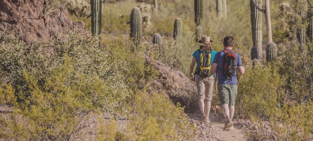 Image of couple hiking in Tucson desert.